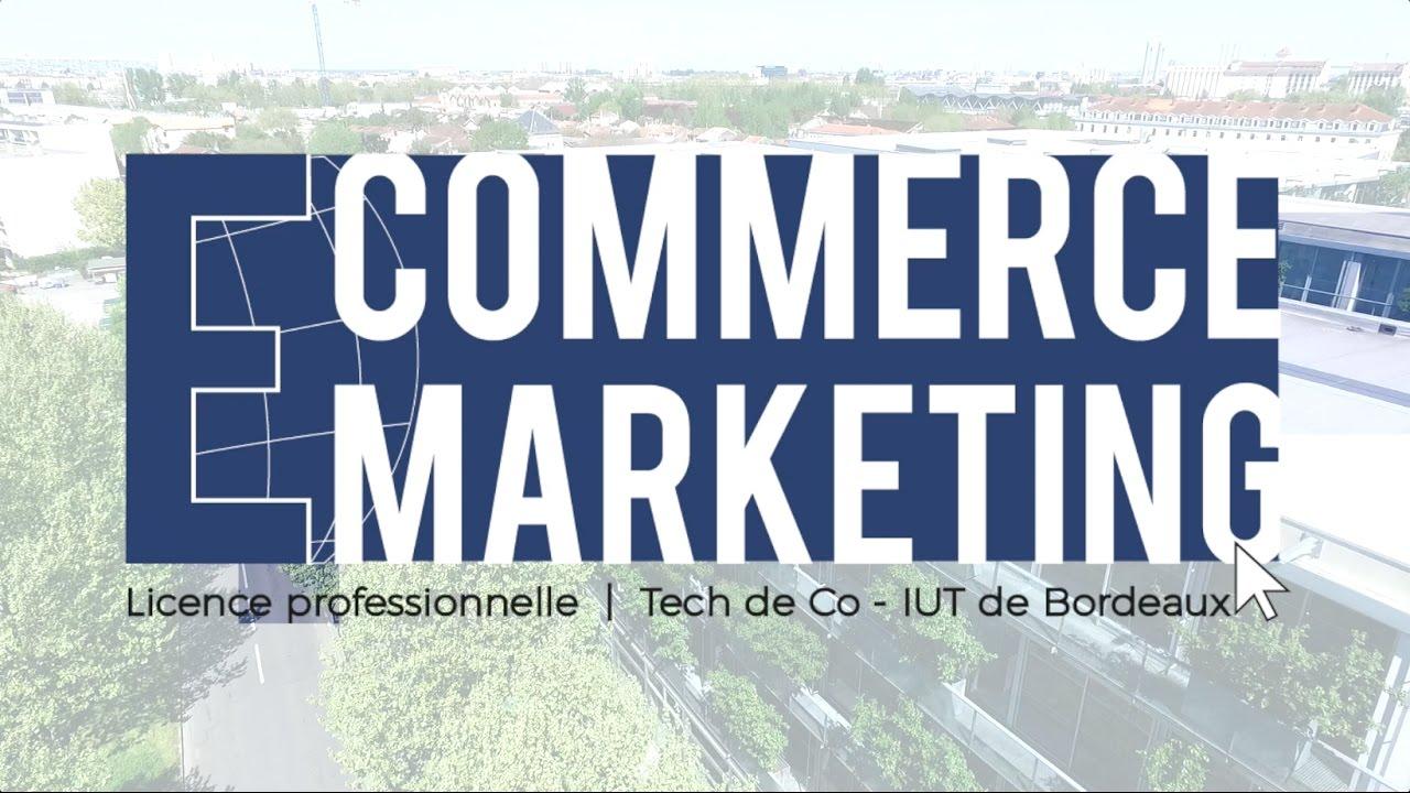Présentation Licence Pro E-commerce Et Marketing Numérique