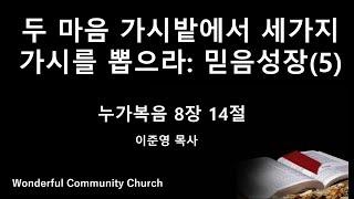 #원더풀커뮤니티교회 주일 예배 11/15/2020