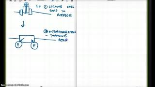 G PROTEIN COUPLED RECEPTORS PART 2