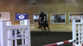 Constant Star at the 2014 Anne Kursinski clinic