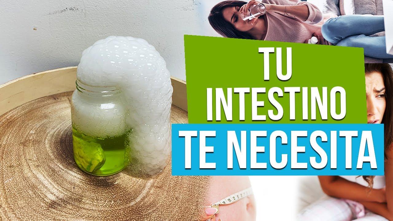 TU INTESTINO GRITA AUXILIO Y NO LO SABES
