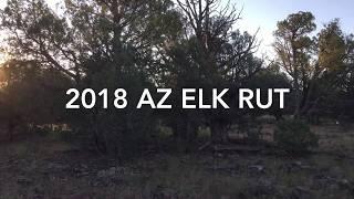 AZ Elk Rut 2018