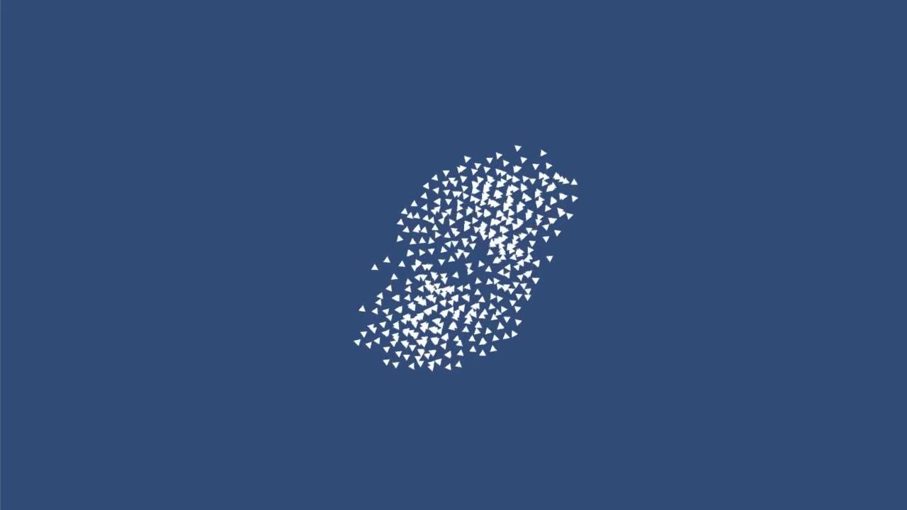 Programming Demos — Brady Johnston