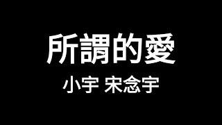 小宇 宋念宇 Xiao Yu - 所謂的愛 So Called Love【歌詞版】