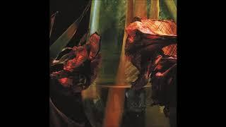 Hayvanlar Alemi - Psychedelia in Times of Turbulence (Full Album 2020)