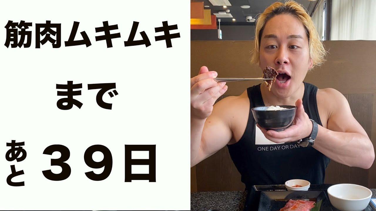 「最高の筋肉飯」ヤキニクを食う幸せ。#shorts