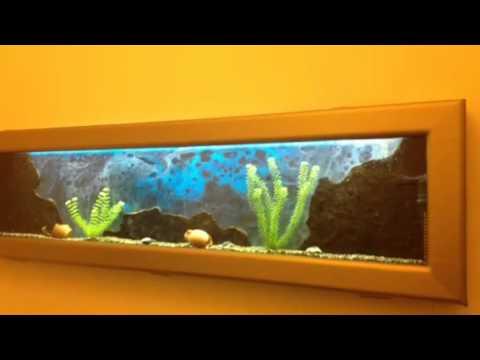 Заказать аквариумы-ширмы или аквариумы-перегородки вы можете по специальным ценам. Звоните!
