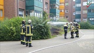 Feuer im Buschwerk droht auf Wohnhaus überzugreifen – Feuerwehr in Hagen-Haspe im Einsatz