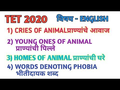 ANIMAL CRIES | YOUNG ONES OF ANIMAL | HOMES OF ANIMAL| WORDS DENOTING PHOBIA