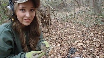 Metal Detecting W Nuggetnoggin Amp Abby Youtube