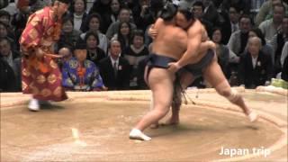 勢 vs 旭秀鵬の取組。2016大相撲春場所2日目。