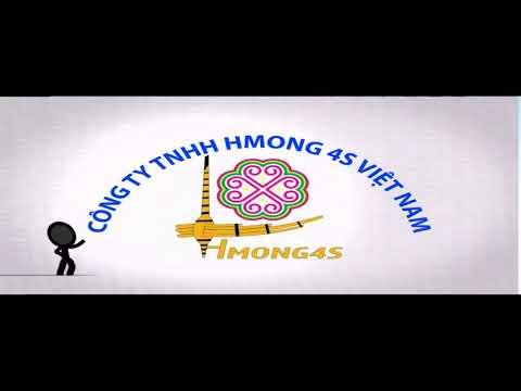 Hmong 4S