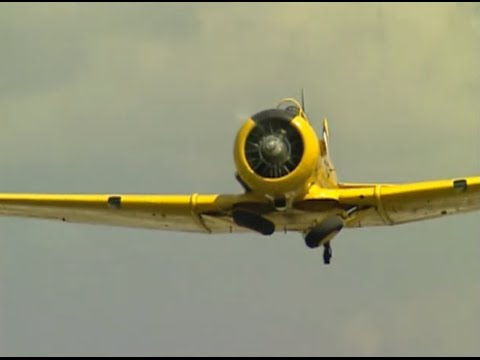 Mass Flyby of Canadian Harvards, North American T-6 Texan, and Naval SNJ