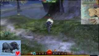 Guild Wars 2 - Gandara - A Story of Bessie