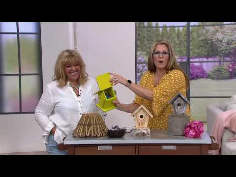 Vantage View Wooden Birdhouse by Evergreen on QVC