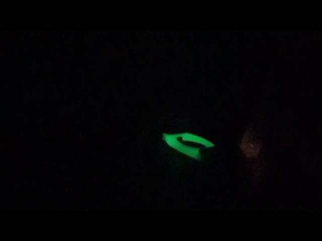 Freestyle Libre Glow In The Dark Armband / Guardian