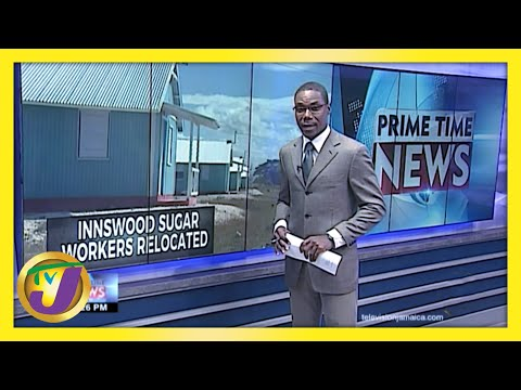 Jamaica's Sugar Workers' Cry  | TVJ News