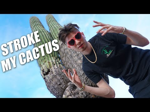 MY CACTUS GOT STROKED!! THE MUST WATCH ARIZONA VLOG!