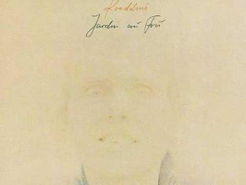 Hans-Joachim Roedelius - Fou Fou