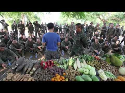 U.S. Marines Learn Jungle Survival From Thai Marines