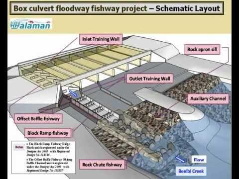 Walaman Fishways Innovative Design