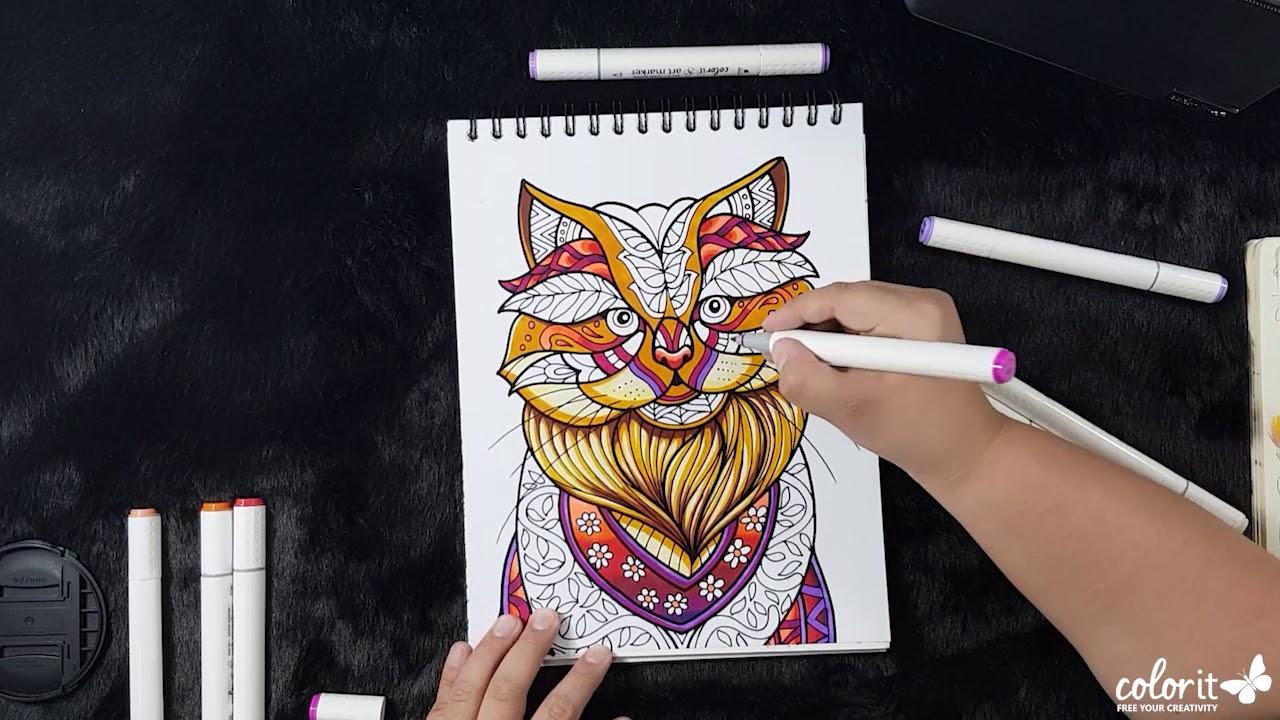 20 Gambar Kucing Lucu Untuk Mewarnai • Goldenmaze