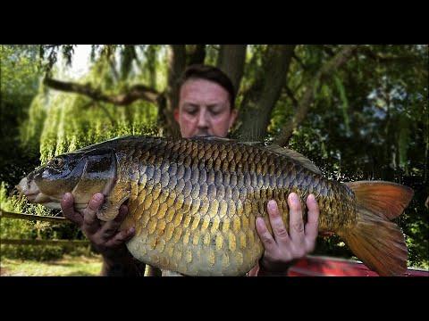 Carp Fishing 2020 Southend Farm Lake