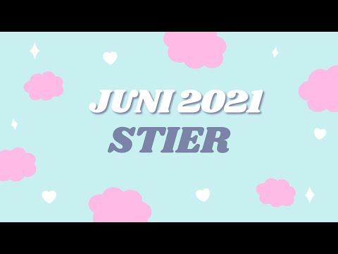 Stier Juni 2021
