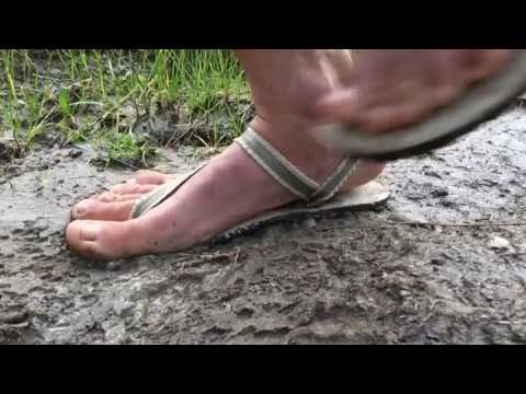 4ad6b548f1f6 Earth Runners Adventure Sandals In The Mud - YouTube