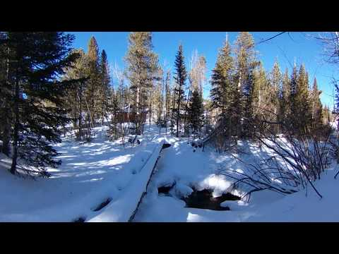 Relax next to a Frozen Stream -- 360 VR Immersive Experience.
