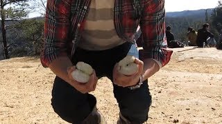 how to split an apple with bear hands