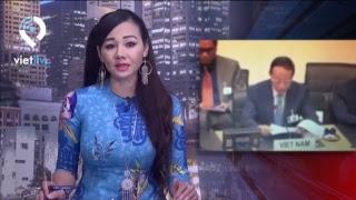 VIETLIVE TV ngày 19 11 2018