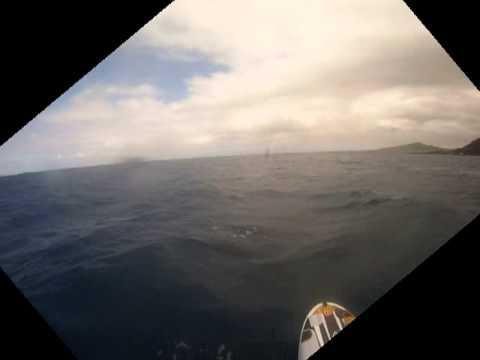 Phoenix island to island crossing