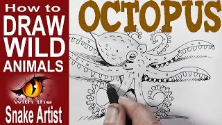 How to Draw an Octopus (for Beginners)