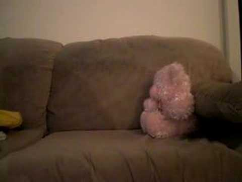Masturbating with teddy bear