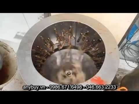 Máy vặt lông gà, máy vặt lông vịt http://anybuy.vn/