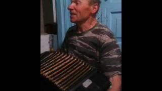Гармонист жгет.Песни под гармошку