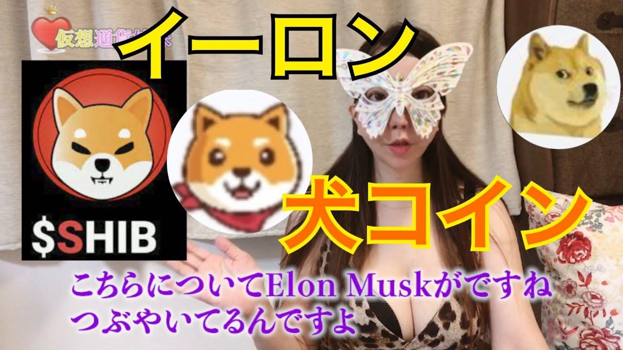 Akita Inu(AKITA)❎ポルカドット と SHIBA INU(SHIB)イーロン爆上げ !犬コイン ドージコイン Dogecoin(DOGE)