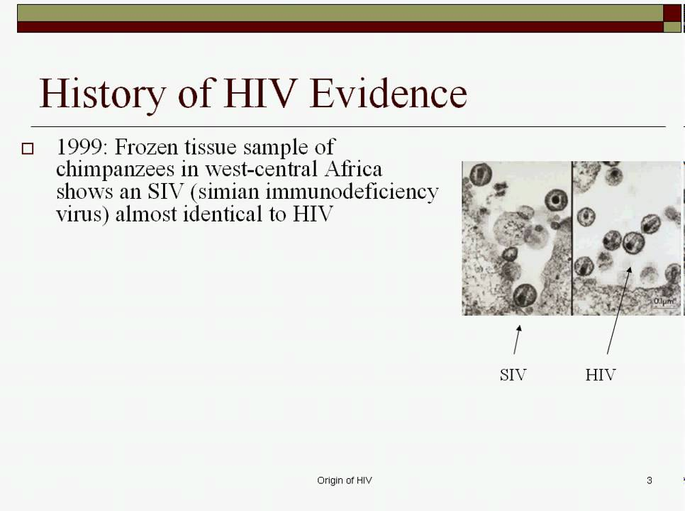 hot zone theories of the origin of aids Ebola outbreak 2014, dr umar johnson conspiracy on ebola virus crisis ebola outbreak 2014, dr umar johnson, conspiracy, ebola virus, ebola  ebola outbreak.