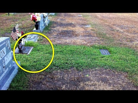 Mom Didnt Understand Why Her Sons Grave Was Green – She Couldnt Stop Crying When She Knew Truth