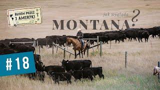 #18 Montana, kowboje, broń i gorączka złota
