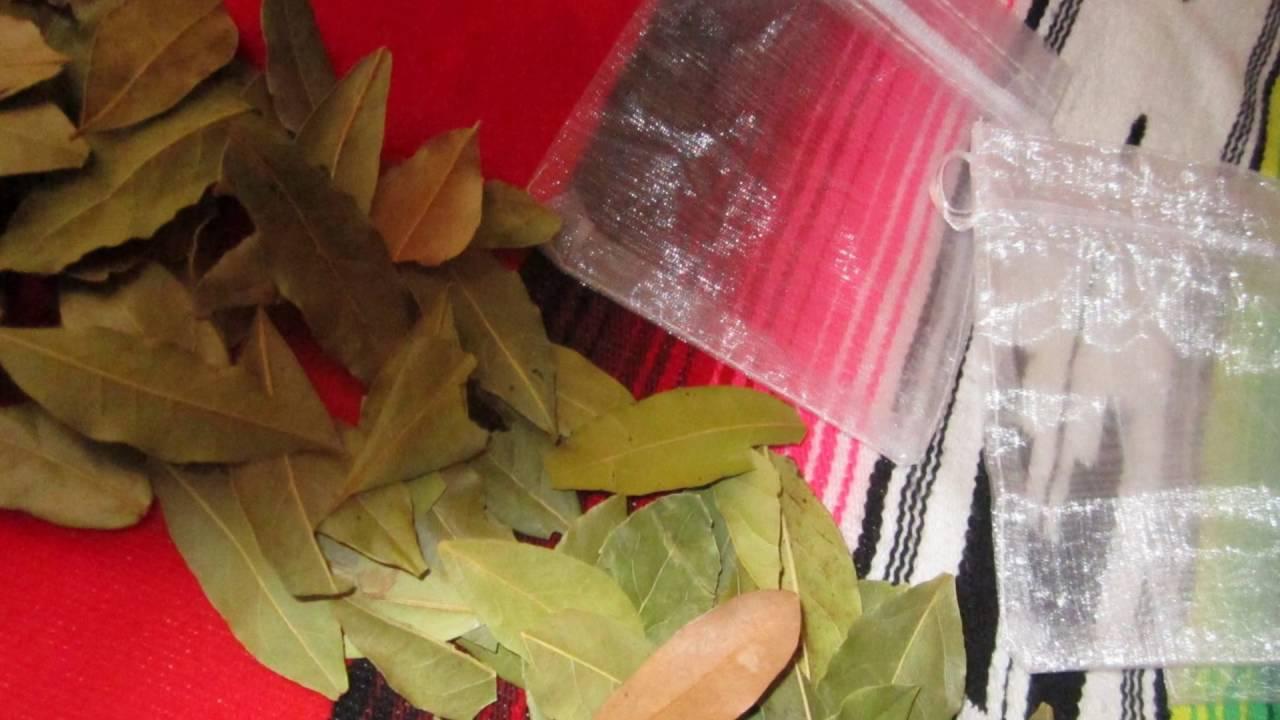 Antipolilla como eliminar las polillas en casa con - Como eliminar la polilla ...