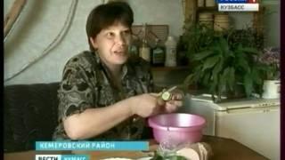 видео Как правильно хранить березовый сок