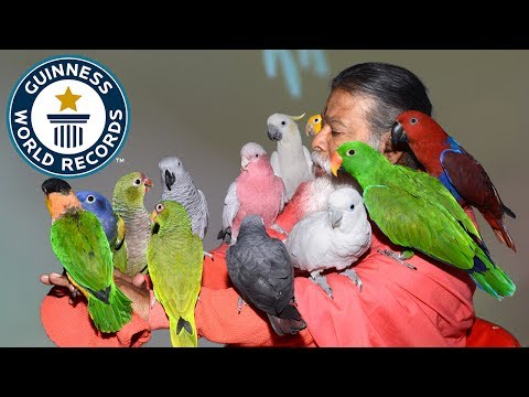 Most bird species in an aviary - Guinness World Records
