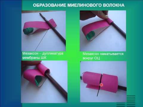 Связанное пальто крючком: схема изделия