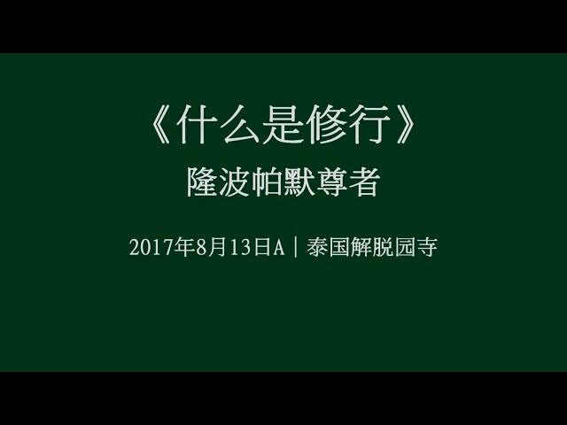 第七屆|05 何為修行——隆波帕默尊者|2017年8月13日A(泰語中文字幕)