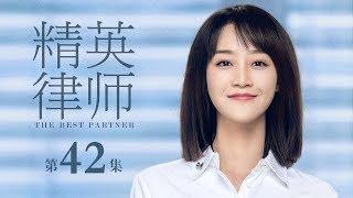 精英律師-42-the-best-partner-42-大結局-靳東-藍盈瑩-孫淳等主演