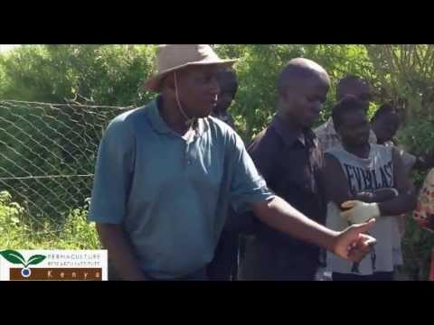 Rusinga Island Organic Farmers Association, Kenya
