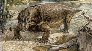 Lystrozaur – świnia która rządziła światem