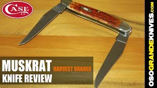 Case Muskrat Pocket Worn Harvest Orange Jig Bone Knife Review | OsoGrandeKnives